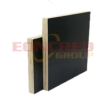 Shuttering Poplar Black Film Faced Plywood
