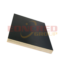 4x8 Poplar Black Film Faced Plywood for Construction