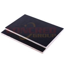 10mm 4x8 Poplar Black Film Faced Plywood